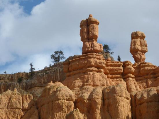 Red Canyon3